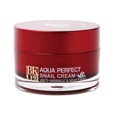 Aqva Perfect Snail Cream 50g