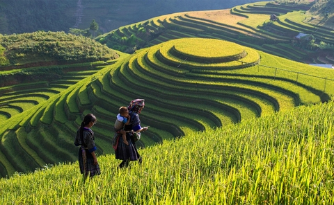 Sapa Trekking Tours 4 Nights - 3 Days by Train
