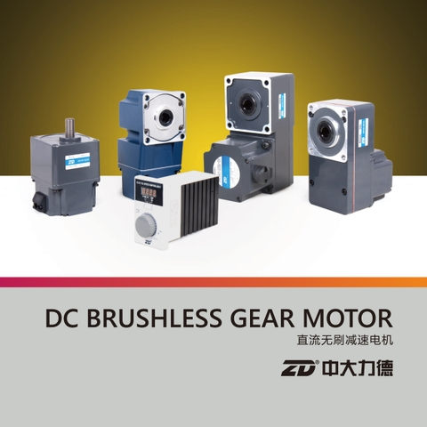 DC BRUSHLESS GEAR MOTOR (L type)