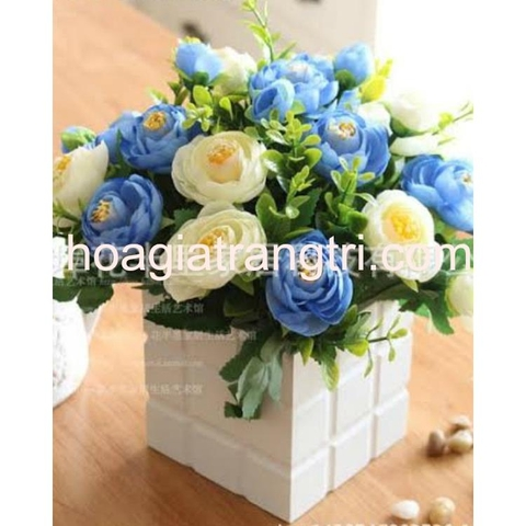 Hoa trà để bàn hai màu trắng và xanh kết hợp