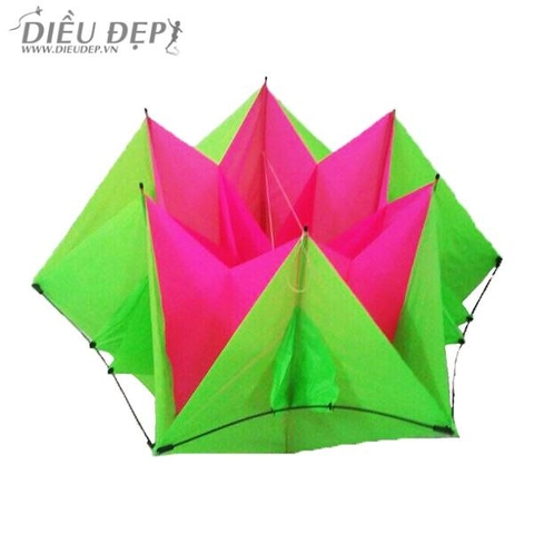DIỀU 3D - HEX LOTUS