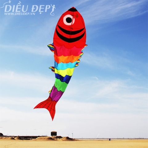DIỀU CÁ COLORFISH