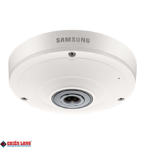 Camera IP SAMSUNG SNF-8010P