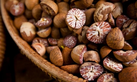 Areca nuts export quality