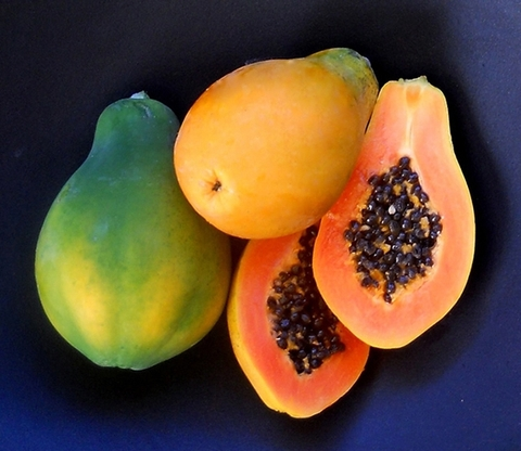 Export papaya