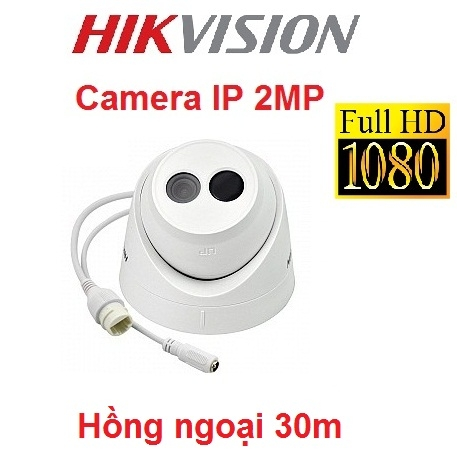 CAMERA IP HIKVISION 2MP DS-2CD1321-I