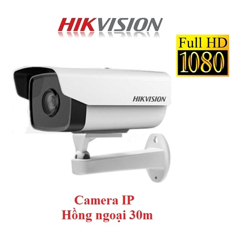 CAMERA IP HIKVISION 2MP DS-2CD1221-I3