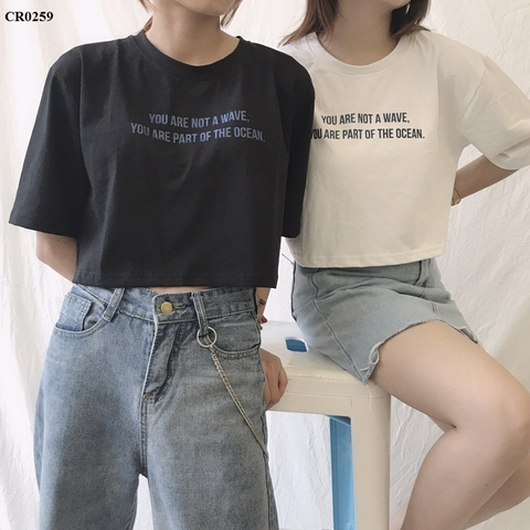CR0259 - Áo croptop cotton Of The Ocean - sỉ 100k
