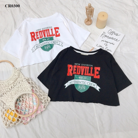 CR0300 - ÁO CROPTOP XƯỢC IN AUTHENTIC 1981 - SỈ 100K