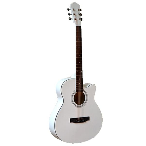 Đàn guitar acoustic Vines VA-4010WH