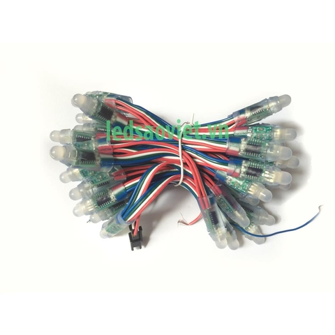 Led đúc F8 Full Color IC 6803
