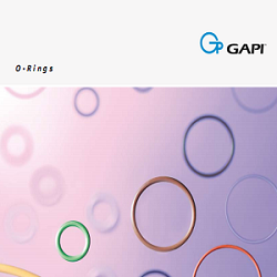 CATALOGUE ORING GAPI