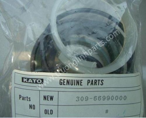 Seal 309-66990000 for Kato 35HB, CR100