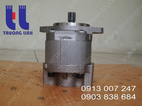 Hydraulic Gear Pump For Crane LW160-1