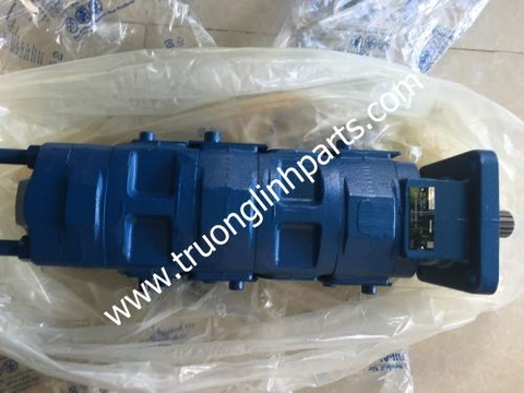 Hydraulic pump 366-509-00000 for Tadano TR250M-3
