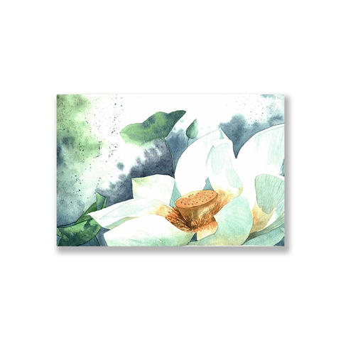 Tranh White lotus watercolor S0233