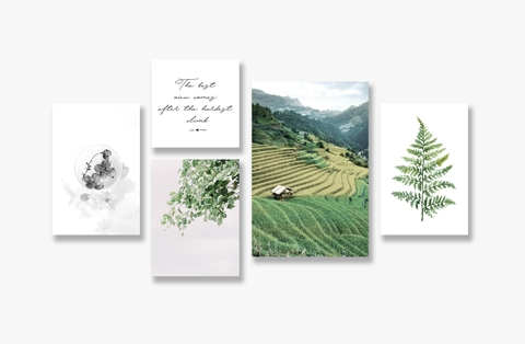 Tranh Sapa, Field, Landscape, Leaves, Flower, Green SE190