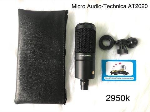 Micro Audio-Technica AT2020