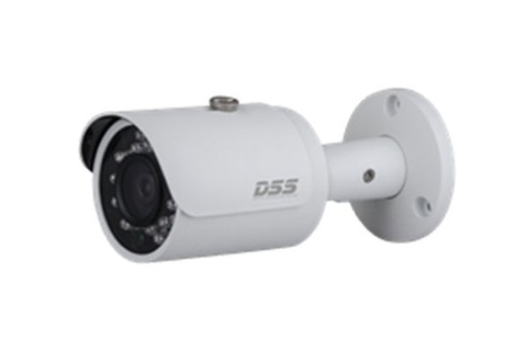 Camera IP Dahua DSS DS2300FIP (3.0 Megapixel)