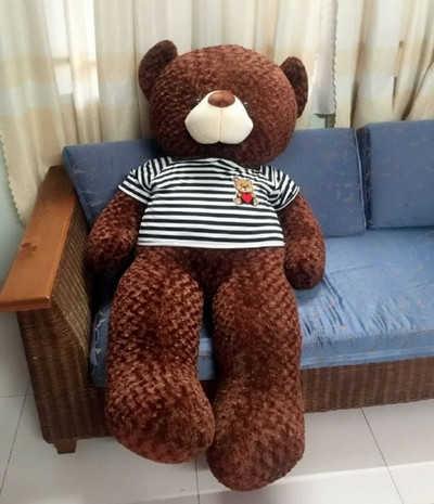 GB19 Gấu bông Teddy nâu