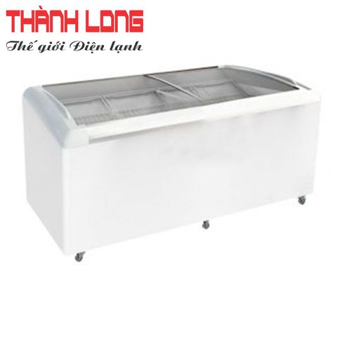 TỦ ĐÔNG THE COOL REBECCA TC 250ISE