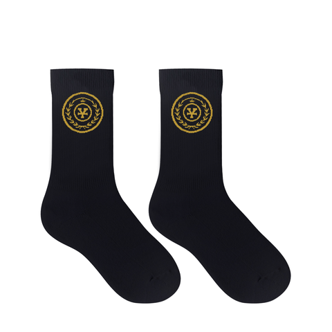 DirtyCoins Academy socks
