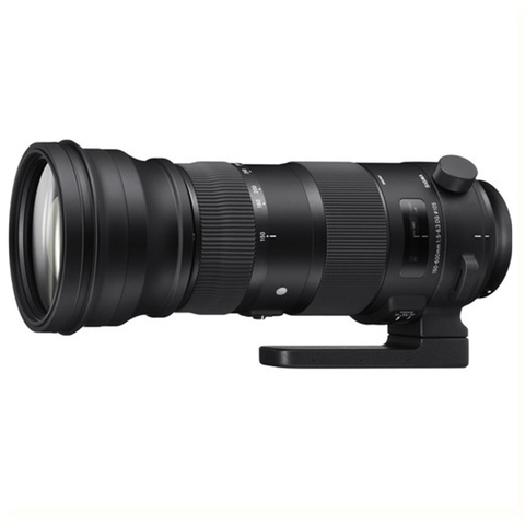 Sigma 150-600mm F/5-6.3 DG OS Sports - Mới 99%