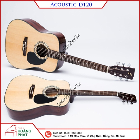 Copy of Guitar Acoustic D120
