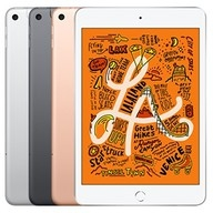 iPad Mini 5 7.9 Wi-Fi 4G 256GB