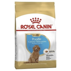ROYAL CANIN - Poodle Junior 500g