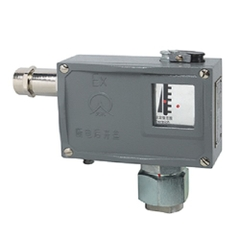 501/7D Explosion-proof Pressure Switch