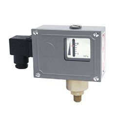 502/7D Dual Contact Point Pressure Switch