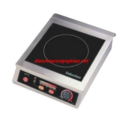 Induction Cooker tabletop 2.5kw TT-2500