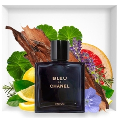 Nước Hoa Bleu De Chanel (parfum) For Men 100ml XT8