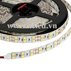 Led Dây 5050-L120-Indoor