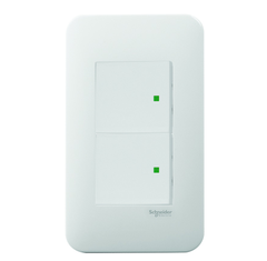 Bộ chuyển mạch Schneider Electric S-Flexi - 2 Gang 1 Way Switch, Medium