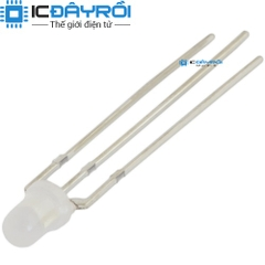 Led RG cathode 3MM