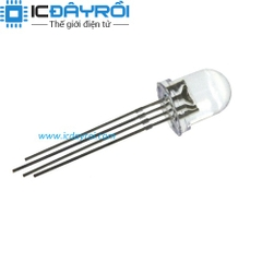Led RGB 10MM Anode
