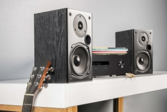 Loa Polk Audio T15