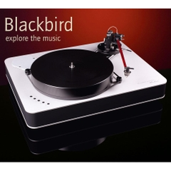 Blackbird Turntable
