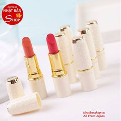 SON CEZANNE LASTING LIP COLOR N 206