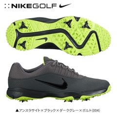 https://linkinggolf.com/giay-golf-nam-nike-air-rival-4-818729-004-s41