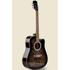 Đàn guitar acoustic Vines VA-4130BKS
