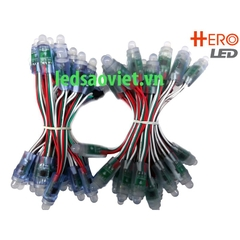 Led đúc F8 full color IC 1903