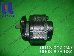 Hydraulic gear pump for crane Tadano TR250M-4