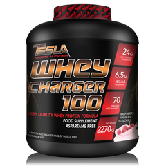 Tesla Whey Charger 100, 2270g