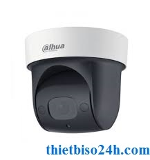 Camera IP DAHUA SD29204T-GN