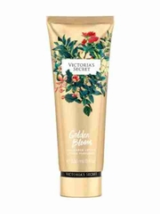 Dưỡng Thể Victoria's Secre Golden Bloom 236ml