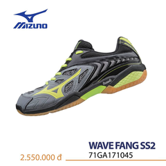 Badminton Shoes Mizuno Mizuno Wave Fang SS2 grey
