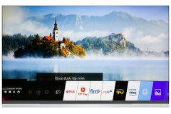 Smart Tivi OLED LG 4K 65 inch 65E9PTA  Model 2019